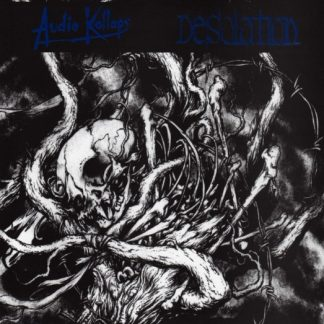 AUDIO KOLLAPS / DESOLATION split EP