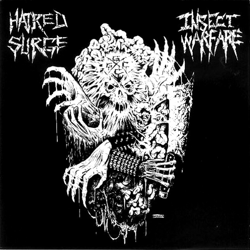 INSECT WARFARE / HATRED SURGE split EP