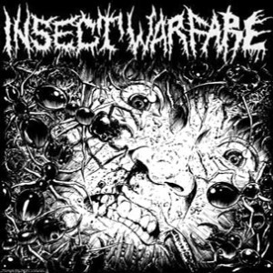 INSECT WARFARE / CARCASS GRINDER split EP
