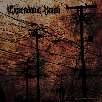 EXPENDABLE YOUTH - The Exposing of the Immortal Person LP